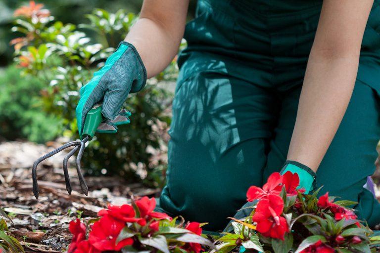 Flower Cutting Machine